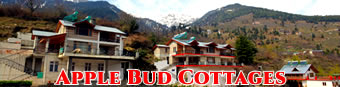 Apple Bud Cottages Manali, Hotels in manali, manali cottages, resorts in manali